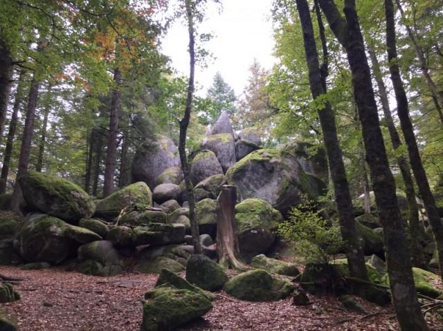 Günterfelsen Brend - Schwarzwald
